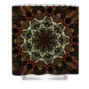 Mandala 111511 Shower Curtain