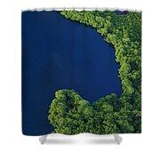 Mangrove Rhizophoraceae Stand, Bocas Shower Curtain
