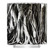 Mangrove Tentacles  Shower Curtain