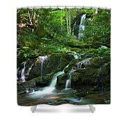 Mannis Branch Falls Shower Curtain