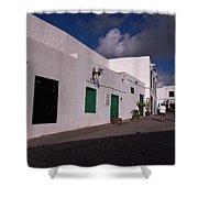 Manrique House Shower Curtain