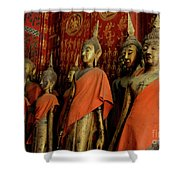 Many Buddhas Shower Curtain