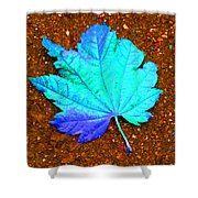 Maple Leaf On Pavement Shower Curtain