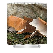 Maple Leaves Contrasted Shower Curtain