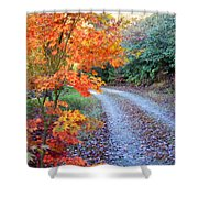Maple Road Shower Curtain