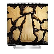 Maple Sugar Candies Shower Curtain