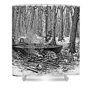 Maple Syrup, 1877 Shower Curtain