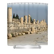 Marble Street In Ephesus Shower Curtain