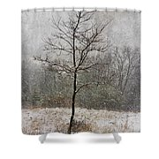 March Tree Shower Curtain