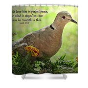 Marigold Dove With Verse Shower Curtain