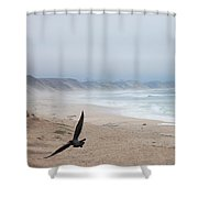 Marina Beach Fly By In The Mist Shower Curtain