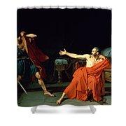 Marius At Minturnae Shower Curtain by Jean-Germain Drouais