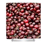 Market Cherries Shower Curtain