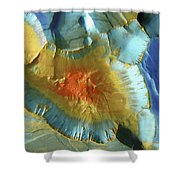 Mars Aerial View Shower Curtain