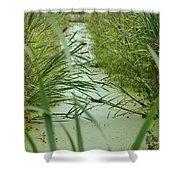 Marsh-field Ma Shower Curtain
