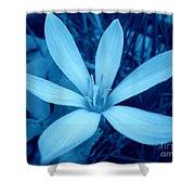 Marsh Grass Flower In Blue Shower Curtain