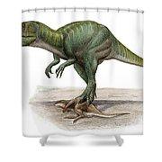 Marshosaurus Bicentesimus Shower Curtain