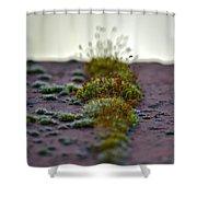 Martian Landscape Shower Curtain