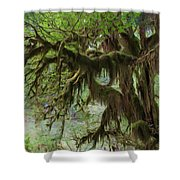 Marvelous Moss Shower Curtain by Heidi Smith