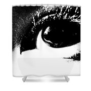 Masked Era Shower Curtain