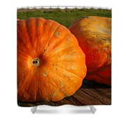 Mass Pumpkins Shower Curtain