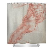 Master Copy 2 Shower Curtain