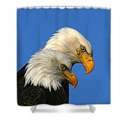 Mated Pair Shower Curtain