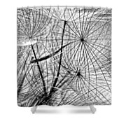 Matrix Monochrome Shower Curtain