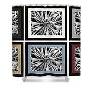 Matte Colors Shower Curtain