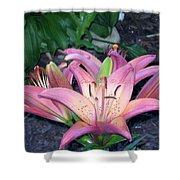 May Birth Flower Shower Curtain
