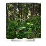 May Lily Shower Curtain
