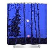May Moon Through Birches Shower Curtain