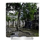 Mayan Colonnade Two Shower Curtain
