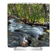 Mcgee Creek California Shower Curtain