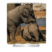 Me And You Shower Curtain