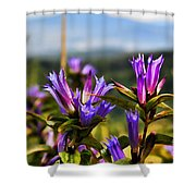 Meadow And Mountains Shower Curtain