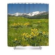 Meadow Landscape Shower Curtain
