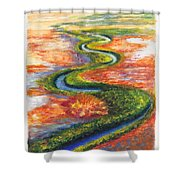 Meandering River In Northern Australian Channel Country Shower Curtain