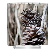 Dry Mediterranean Pinecone With Winter Colors Shower Curtain