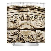 Medusa Of Ephesus Turkey Shower Curtain
