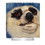 Meerkat Eyes Shower Curtain