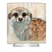 Meerkat 762 Shower Curtain