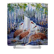 Meeting At The Slough Shower Curtain