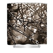 Melting Frost Shower Curtain