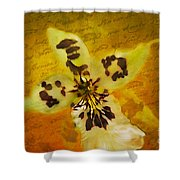 Memories Of An  Orchid Shower Curtain