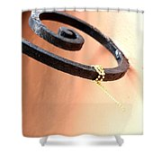 Memories Of New Orleans Shower Curtain