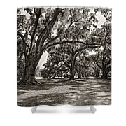Memory Lane Monochrome Shower Curtain by Steve Harrington