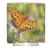 Merritt Butterfly Shower Curtain