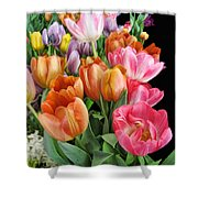 Merry Dresden Style Tulips Shower Curtain