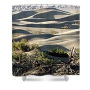 Mesquite Sand Dunes Shower Curtain